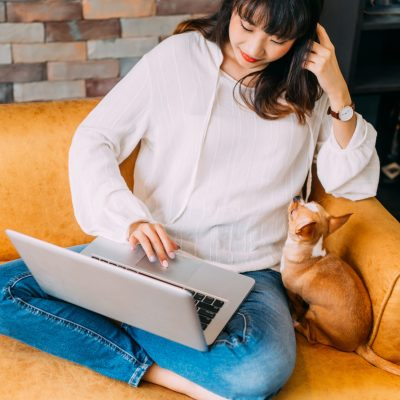30s Asian businesswoman working from home on her laptop in home office. Young adult woman sitting on sofa and typing on computer along with her Chihuahua dog. Remote work technology concept